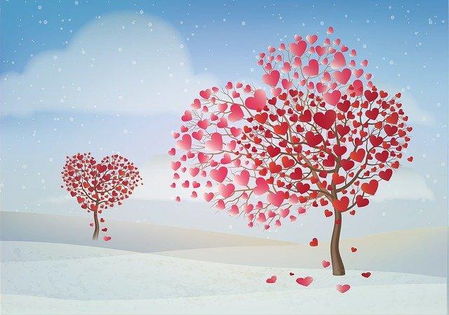 情人节 - 情人节送什么礼物?怎么过才浪漫?