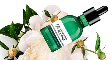 The Body Shop Tea tree Anti-imperfection Daily Solution茶树防瑕疵护肤精华液